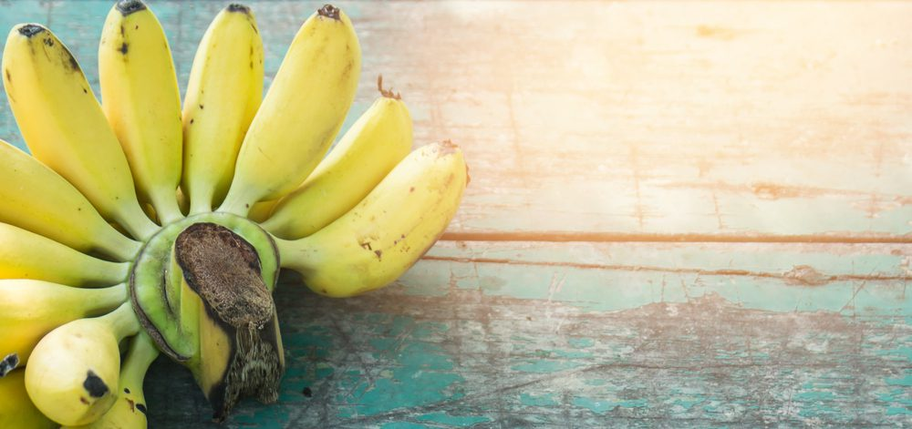 Banana Allergy: Symptoms and more – AllergiesInfo